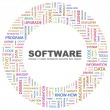 SOFTWARE. Word collage on white background - Imagens vectoriais em stock