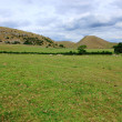 Dovedale — Stock Photo