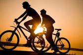 Sportif çift bisiklet — Stok fotoğraf