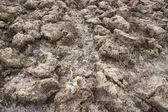 死亡谷 — 图库照片