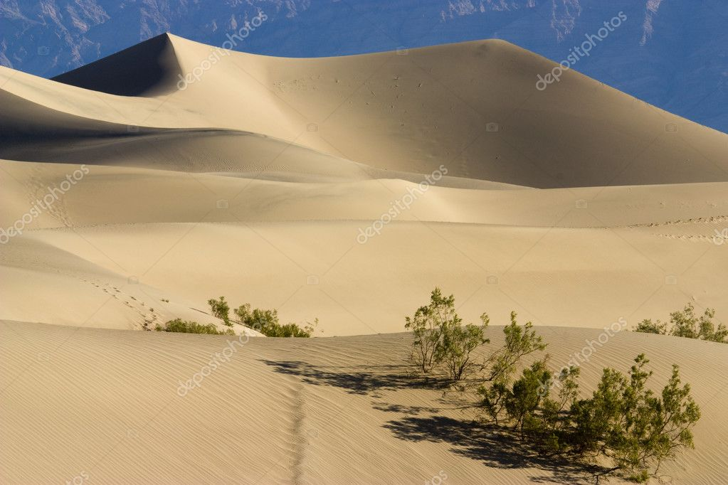 Famous sand dunes in the death valley desert — Stock Photo #3538177