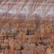 Brice canyon — Stock Photo