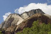Zion canyonnationalpark — Stockfoto