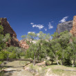 Stock Photo: Zion Canyon National Park