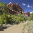Stock Photo: Virgin River