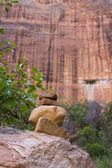 Zion Canyon National Park — Foto Stock