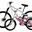Mountain bike and child bike - Stock Photo
