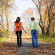 Young couple walking in the park — Stock Photo #3160761