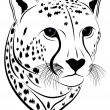 Royalty-Free Stock Vector Image: Cheetah