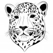 Stock Vector: Leopard, tattoo