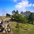 Bike in mountains — Stockfoto