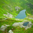 Alpine lake — Stock Photo #3718227