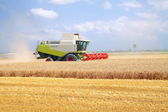 Combine for harvesting wheat — Stock Photo