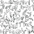 Stock Vector: Sketches of animals
