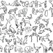 Sketches of animals — Stok Vektör