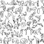 kresby zvířat — Stock vektor