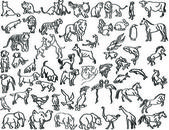Sketches of animals — Stock Vector