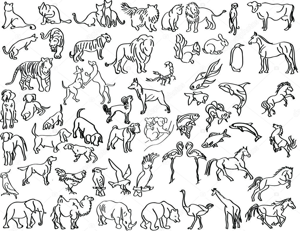 Vector sketches of animals — Stock Vector #2777370