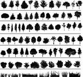 Bomen, struiken, gras — Stockvector