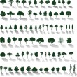 Vector trees with shadows - Stok Vektör