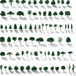 Vector trees with shadows — Stock Vector