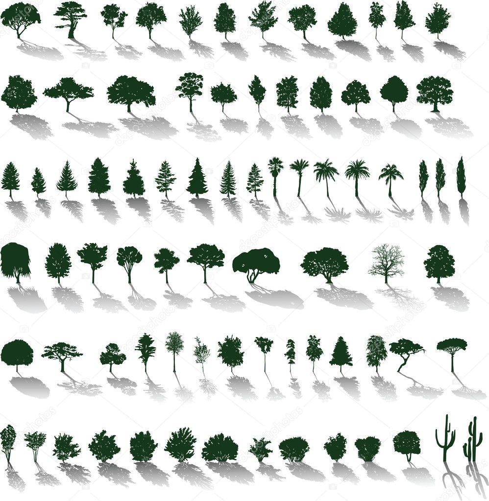 Set of vector silhouettes of trees and bushes with shadows  Stock Vector #3670390