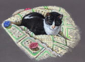Color Pencil Drawing of Cat on Afghan — Stock Photo