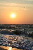 Orange sunrise — Stock Photo