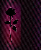 Beautiful black rose — Stock Vector