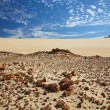 Desert on a Fraser island — Stock Photo