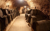 Corridor in winery — Stockfoto