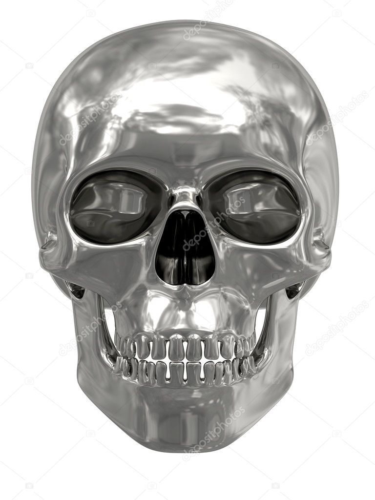 Silver or platinum skull isolated on white background. High resolution 3D image — Photo #2731892