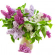 Colorful bouquet of lilacs — Stock Photo #3163748