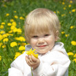 Stock Photo: Little girl with dandelions