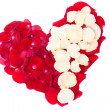 Heart of the petals of red and white roses — Stock Photo #3753159