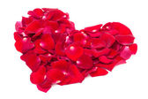 Heart of the petals of red roses — Stock Photo