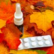 Stock Photo: Autumn leaves and medicament