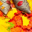 Autumn leaves and shoes — Stockfoto
