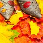 scarpe e foglie di autunno — Foto Stock
