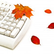 Autumn keyboard — Stock Photo