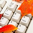 Autumn keyboard — Stock Photo #2794007
