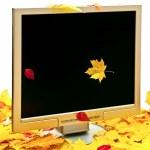 monitor d'autunno — Foto Stock