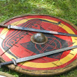 Swords on shield — Stock Photo #2796559