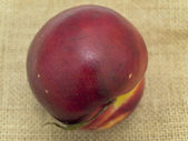 Nectarine — Stock Photo