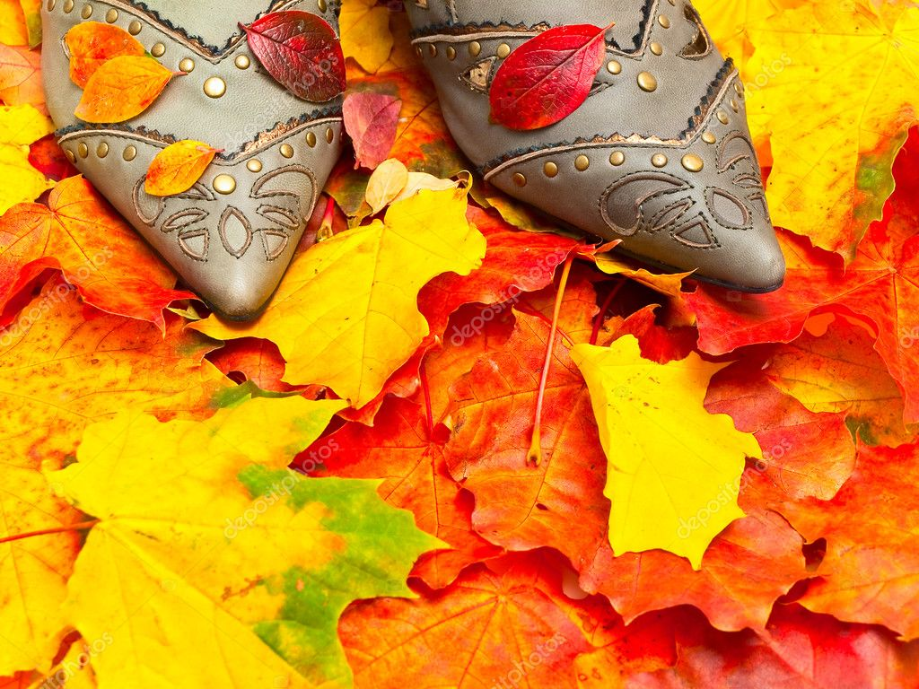Photo of the autumn leaves background and woman shoes — Stock Photo #2793885