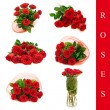 Roses set — Stock fotografie