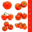 Tomato set — Stock Photo #2951895