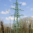 Electricity tower in trees — Stock Photo