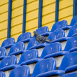 Dove at the stadium — Stock Photo