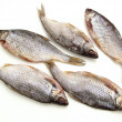 Dry fish — Stock Photo #2953402